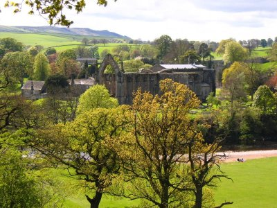 A view around Bolton Abbey