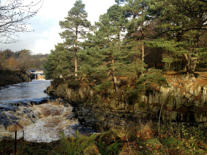 A view around High Force